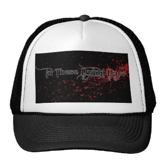 In These Dying Days Bloodshot Hat