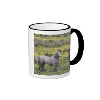 In Western Ireland, three horses with long Ringer Coffee Mug