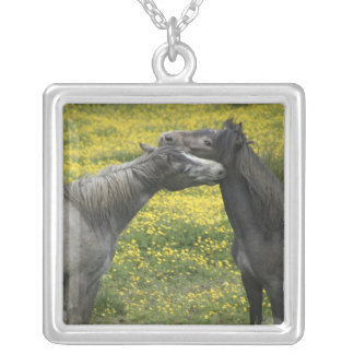 In Western Ireland,two horses nuzzle in a Silver Plated Necklace