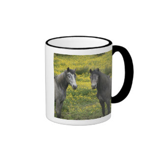 In Western Ireland, two horses with long Ringer Coffee Mug