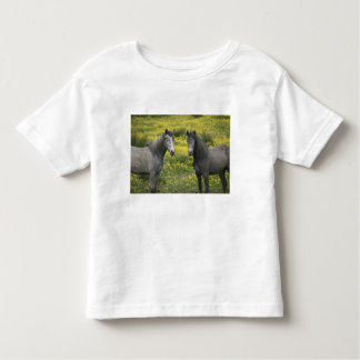 In Western Ireland, two horses with long Toddler T-shirt