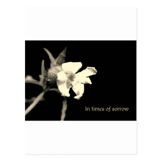 In you time of sorrow - condolences postcard