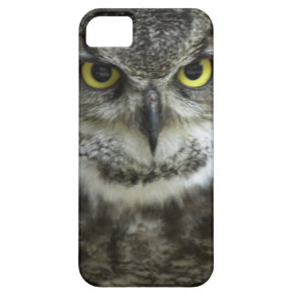 In Your Face Owl iPhone 5 Case