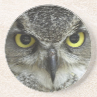 In Your Face Owl Sandstone Coaster