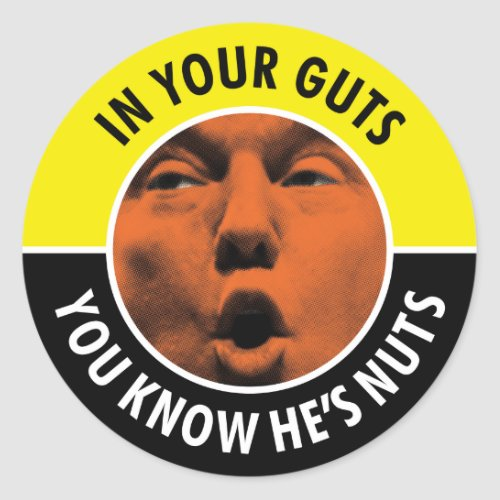 In Your Guts You Know Hes Nuts Trump Sticker