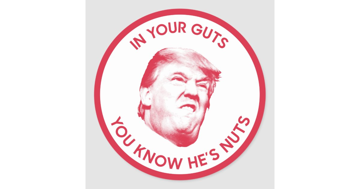 In Your Guts You Know Trump Is Nuts Classic Round Sticker