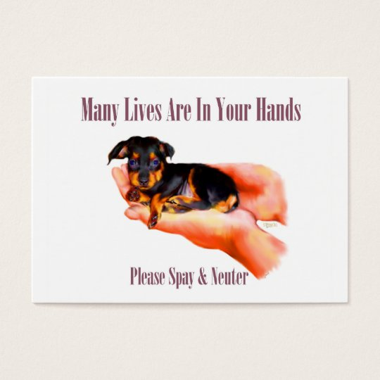In Your Hands (Please Spay & Neuter) Business Card