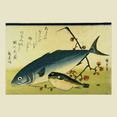Inada & Fugu from A Shoal of Fishes