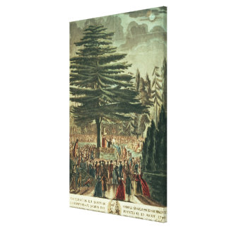 Inauguration of the bust of Carl Linnaeus Canvas Prints