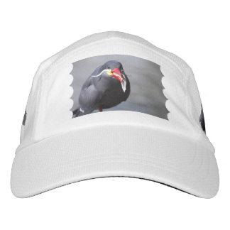 Inca Tern Headsweats Hat