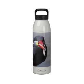 Inca Tern Drinking Bottles