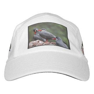 Inca Terns Headsweats Hat