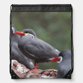 Inca Terns Backpack
