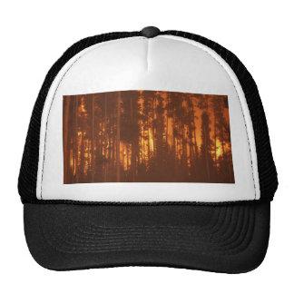 Incendio forestal gorros bordados