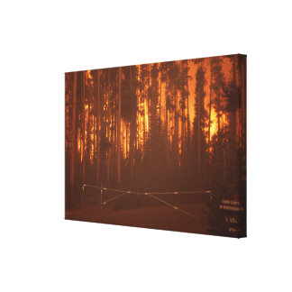 Incendio forestal impresiones en lienzo estiradas