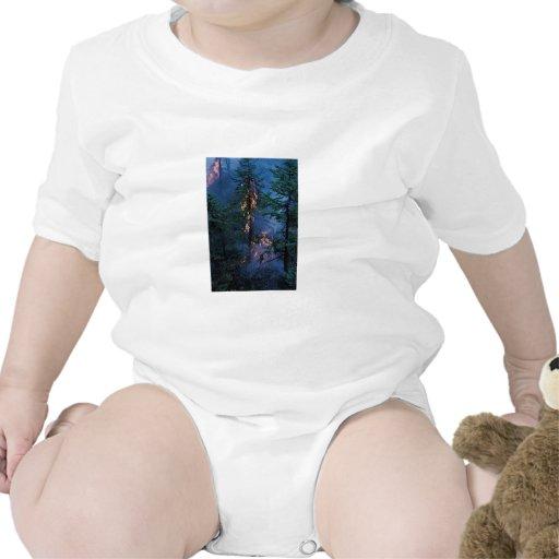 Incendio forestal traje de bebé