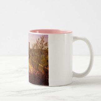Inchcolm Abbey Two-Tone Coffee Mug
