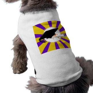 Inclinación y diploma del casquillo del graduado c ropa de perro