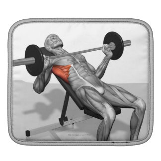 Incline Bench Press 2 iPad Sleeves