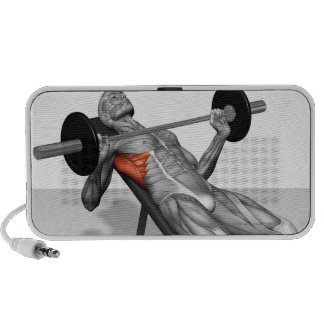 Incline Bench Press 2 Travelling Speakers