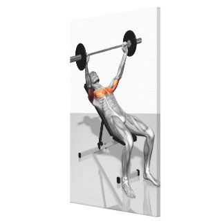 Incline Bench Press 3 Canvas Prints