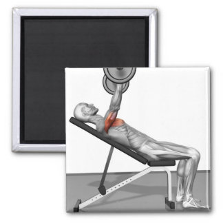 Incline Bench Press 3 Magnet