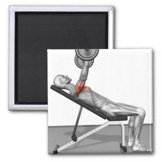 Incline Bench Press 3 Fridge Magnets