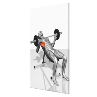 Incline Bench Press Stretched Canvas Print