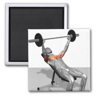 Incline Bench Press Magnets