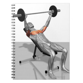Incline Bench Press Notebook