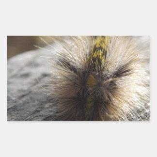 Incluso Catipilars crece para ser Butterfies Pegatina Rectangular