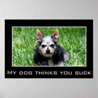 Incluso mi perro sabe que usted chupa poster