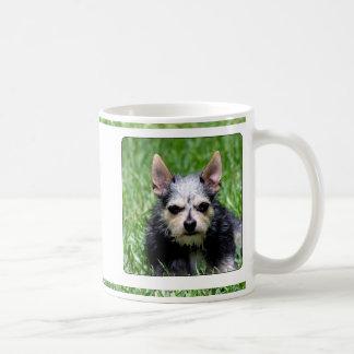 Incluso mi perro sabe que usted chupa taza de café