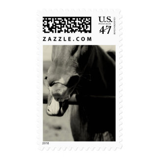 Incognito emotion postage