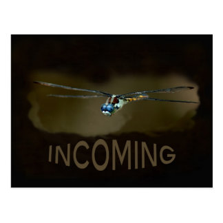Incoming dragonfly postcard