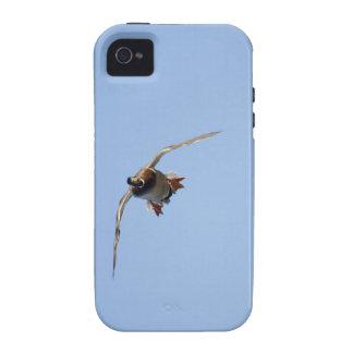 Incoming - Drake Mallard Duck Vibe iPhone 4 Case
