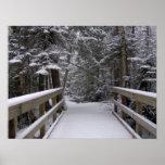 Incorpore - la escena de la nieve de New Hampshire Póster