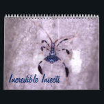 """Incredible Insects Calendar<br><div class=""""desc"""">Butterflies and crickets,  katydids and stick insects; there are fascinating creatures all around.</div>"""