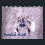 "Incredible Insects Calendar<br><div class=""desc"">Butterflies and crickets,  katydids and stick insects; there are fascinating creatures all around.</div>"