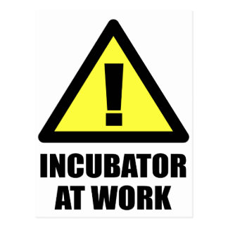 Incubator At Work Postcard