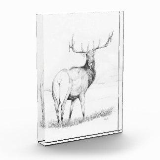 Indecision ~ 5x7 Arcylic Block Acrylic Award