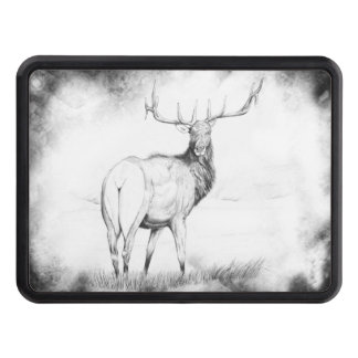 Indecision in the Mist Trailer Hitch Covers