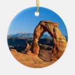 indefinido ornamento para arbol de navidad
