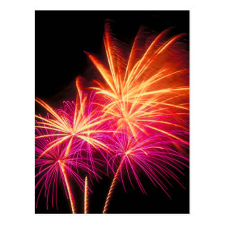 Independence Day Fireworks Postcard