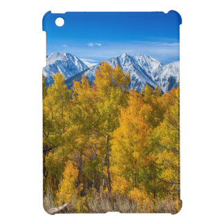 Independence Pass Autumn View iPad Mini Case