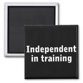 Independent in training magnet