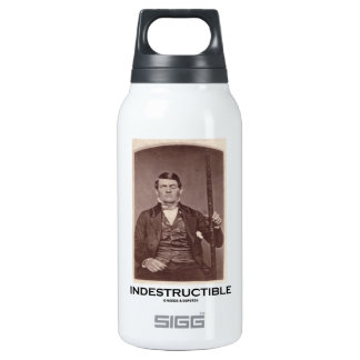 Indestructible (Phineas Gage) 10 Oz Insulated SIGG Thermos Water Bottle