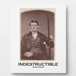 Indestructible (Phineas Gage) Plaque