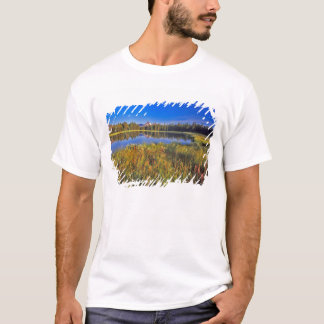 Index Peak reflects into Mud Lake on the T-Shirt