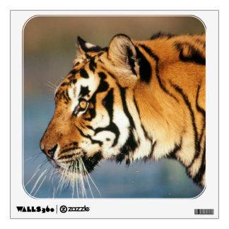 India, Bengal Tiger (Panthera Tigris) 4 Wall Sticker